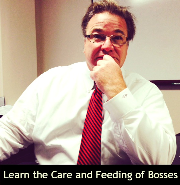 The Care and Feeding of Bosses